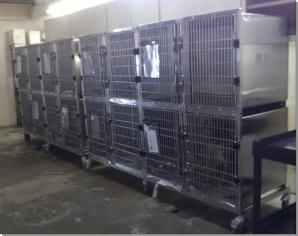 Metal Shelter Cat Kennels : Lifeline touts improvements at county animal shelter