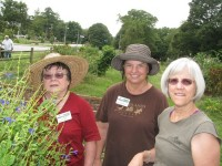 Woodlands Garden Executive Director Claire Hayes, right, assists at a community garden near Decatur High School with Woodlands volunteers and master gardeners Dolly Moy, left, and Janice Whitener.