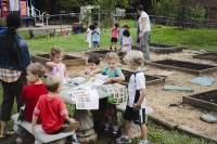 Students at City Schools of Decatur's College Heights Early Childhood Learning Academy plant vegetables for fall harvest at the school garden. Photo provided