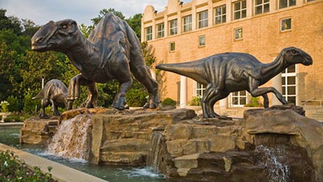 At Fernbank Museum of Natural History, come face-to-face with the world's largest dinosaurs; explore the development of life on Earth.