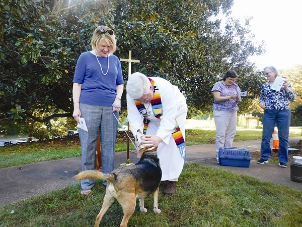 Church holds annual blessing of the animals