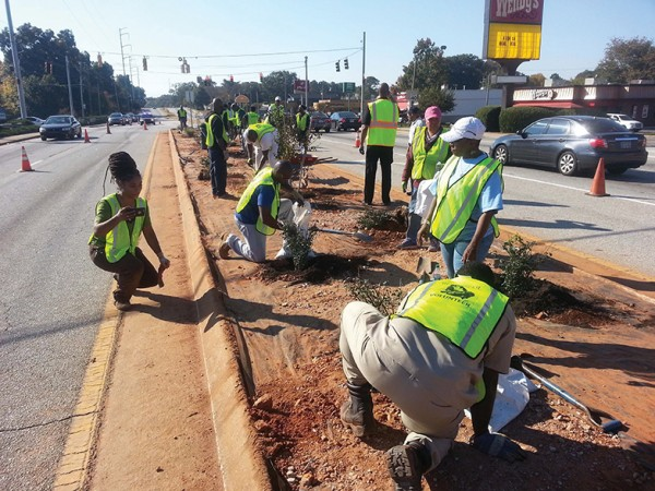 Volunteers pitched in to plant 10 trees and 50 shrubs in the median on Hairston Road just south of Redan Road in October 2016.